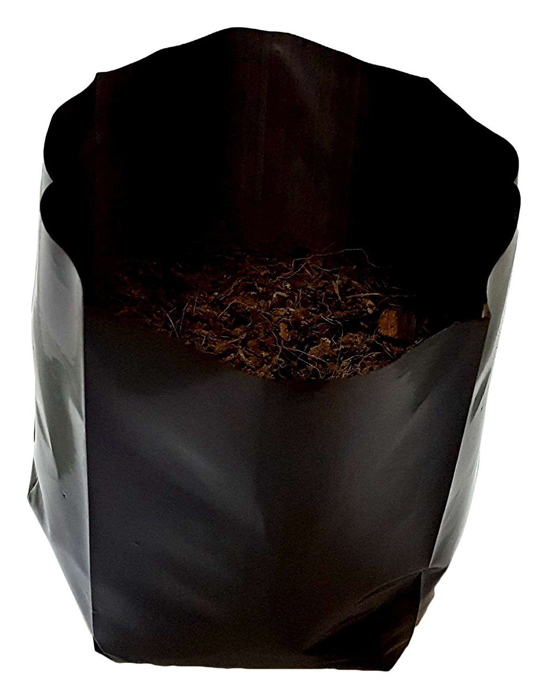 Vegetable Grow Bag Near Me Grow Bags In Trivandrum Kerala