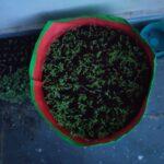 HDPE Grow Bag 18