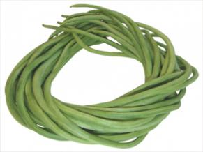 buy hybrid vegetable seeds online
