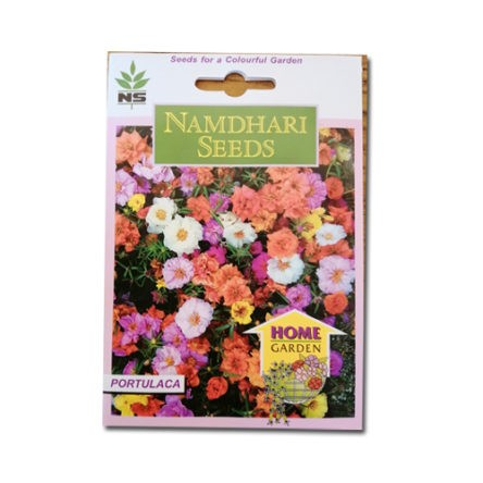 Portulaca Extra Double Mix – Namdhari Seeds