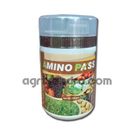 Amino pass – 150 gm