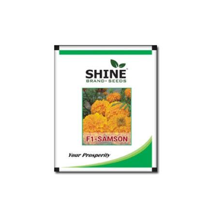 Marigold F1 Hybrid Samson – Shine seeds