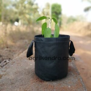 fabric grow bags for terrace garden,